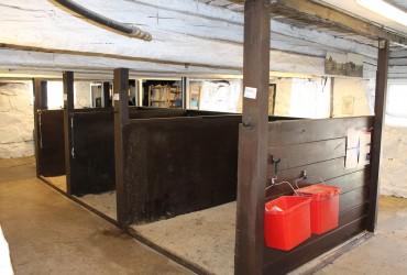 Ponny stallet